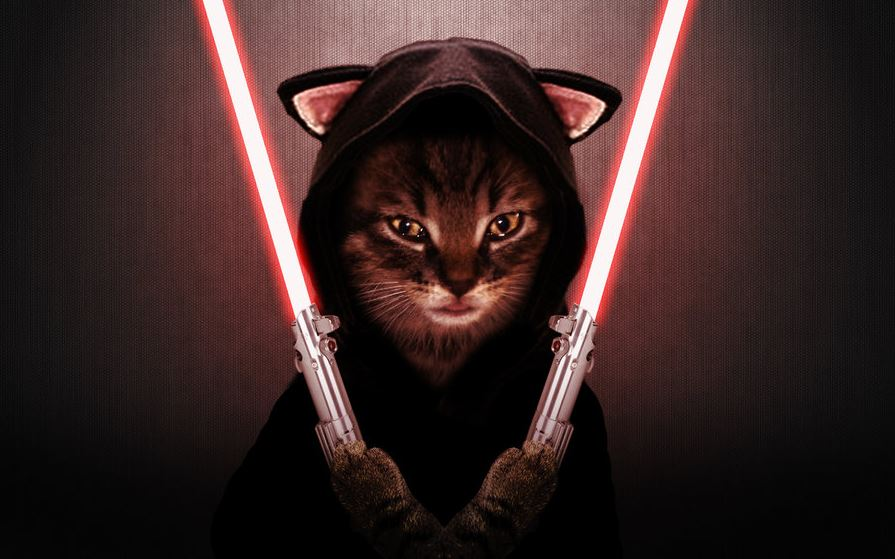 Le méchant chat Sith - Star Wars