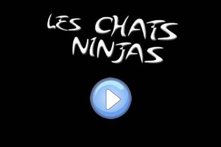 Vidéo des chats ninjas : c'est fou !