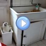 Vidéo du chat Ivanovitch qui tombe plusieurs fois dans une poubelle ! Le pauvre ...