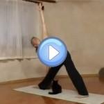 Vidéo du chat qui n'aime pas le yoga