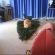 Le chat qui s'est couché sur le sapin artificiel