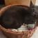 Le chat qui éternue dans son panier !