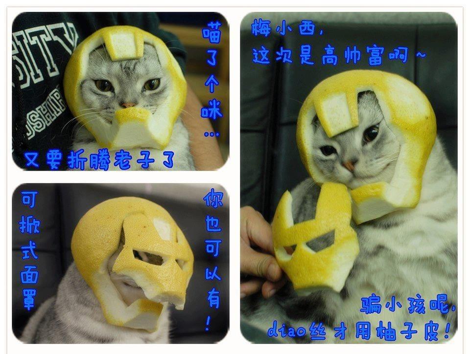 Iron Chat
