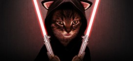 Le méchant chat Sith – Star Wars
