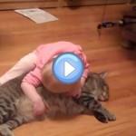 Vidéo du bébé et son chat hyper gentil