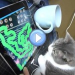 Vidéo du chat qui joue avec une tablette tactile