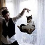 un magicien fait flotter un chat