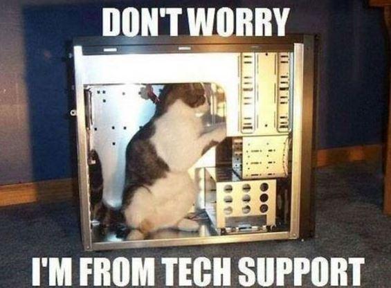 chat au support technique